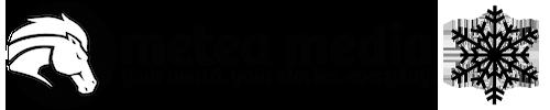 Metea Media